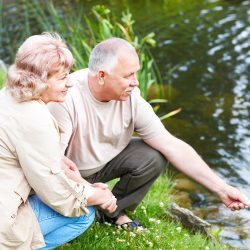 Summer Activity Ideas for the Seniors